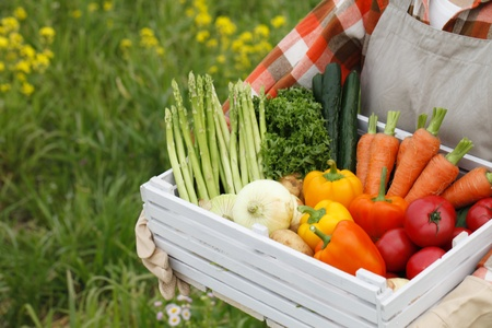 sufficiency: Harvest of vegetables