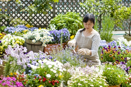 Woman gardening Stock Photo - 12562820