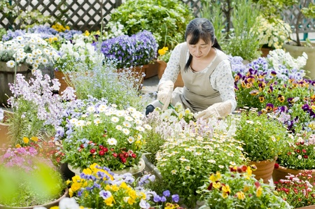 Woman gardening Reklamní fotografie