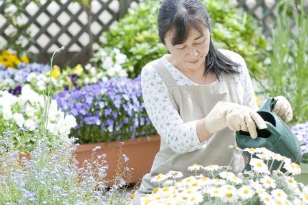 Woman gardening photo