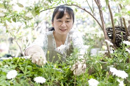 early spring snow: Woman gardening Stock Photo