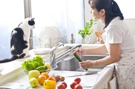 Cat, pet, kitchen,