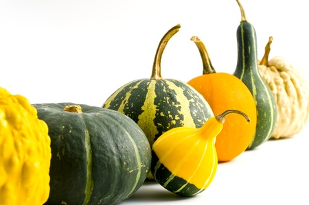heterogeneity: Pumpkin Stock Photo