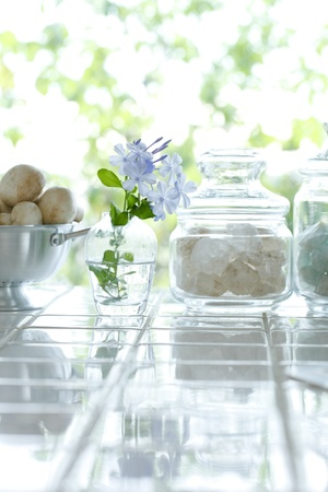 windowsill: kitchen