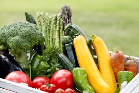 farmers market: Harvest home garden