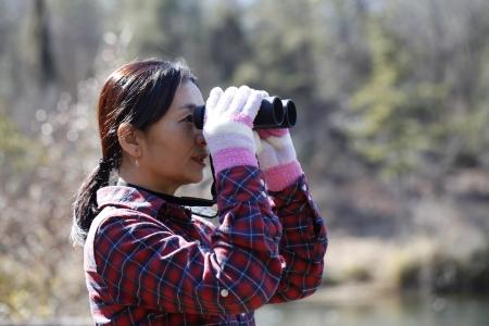 lady bird: Bird Watching