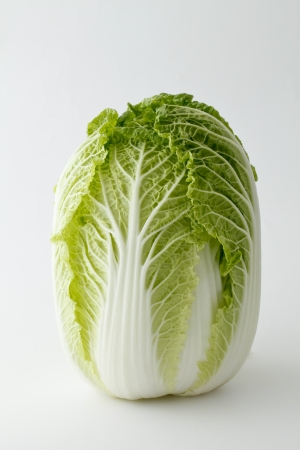 pesticide free: Chinese cabbage