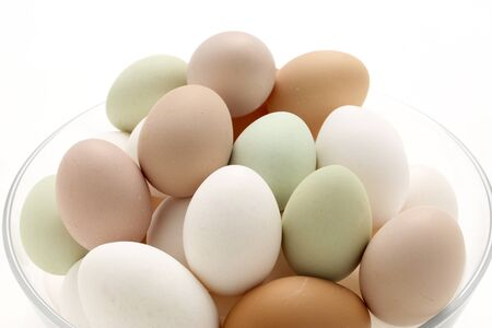 Many kinds of eggs