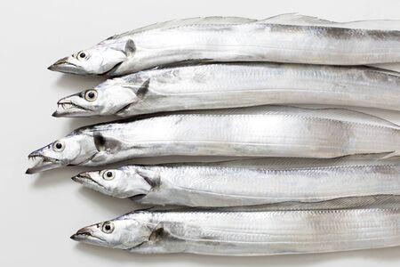 Swordfish, Japanese seafood