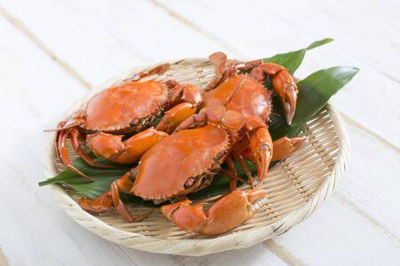 Charybdis japonica photo of crab