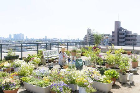 Schöner Garten mit Dachbalkon Standard-Bild
