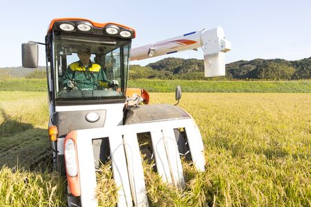 Japanese agriculture, rice harvesting in combine
