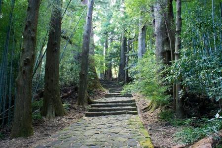 zpevněné: Kámen dlážděná silnice v lese, Kumano Japonsko Reklamní fotografie