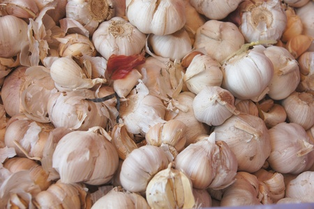 Garlic on market stand photo