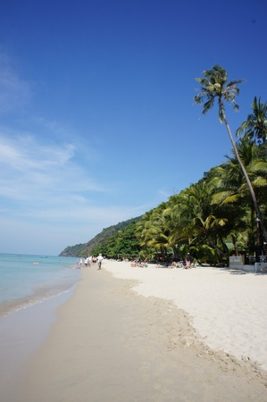 Beautiful tropical beach photo