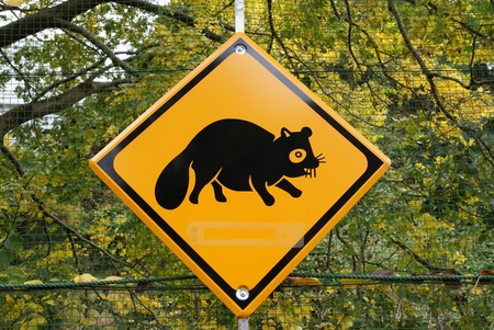 traffic signs, animals photo