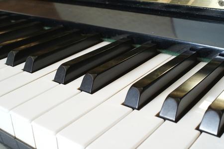 Closeup of Grand Piano Keys Stock Photo - 13059883