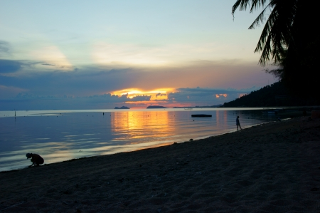 Tropical beach at sunset Stock Photo - 13837579