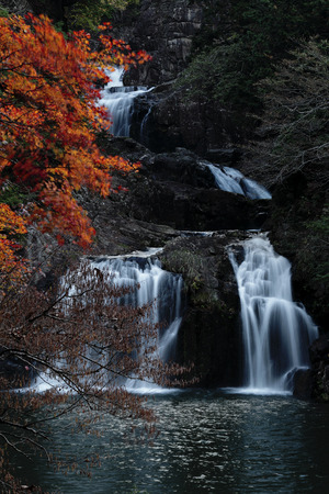 The autumn leaves and waterfall, there are extremely beautiful