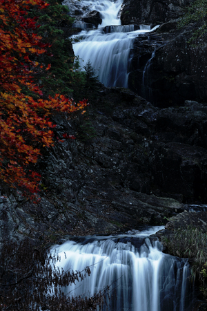 extremely: The autumn leaves and waterfall, there are extremely beautiful