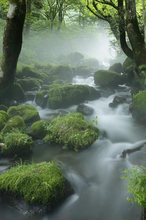 Kitanizawa mountain stream 写真素材