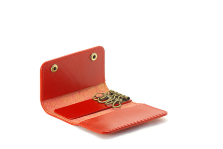 knack: Key ring Stock Photo