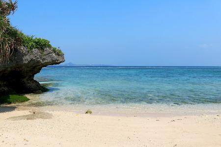 Quiet coast of the South Island 스톡 콘텐츠