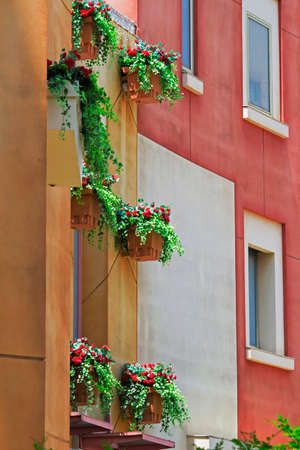 Exterior of a Southern European style building with red flower ornamental plants on the windows