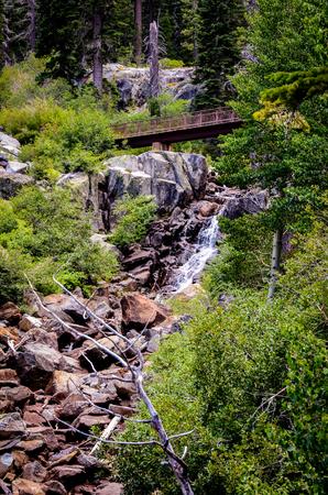tahoe: Tahoe stream