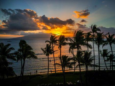 maui: Maui Sunset