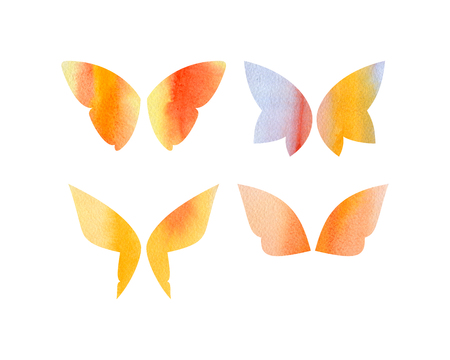 Set of fantasy butterfly wings with watercolor texture isolated on white background Stock Photo - 79763693