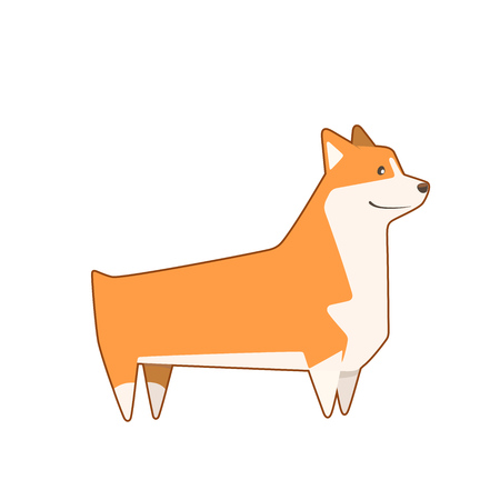 Welsh Corgi breed dog, cutest and smallest sheepdog. Vector illustration Illustration