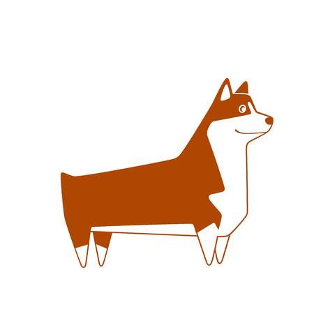 Welsh Corgi breed dog, cutest and smallest sheepdog. Vector illustration