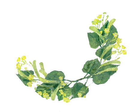 Linden branches with leaves and flowers illustration. Wreath with space for text isolated on white background. Stock Photo