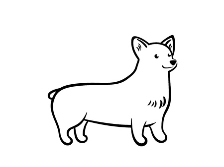 Vector outline staying corgi, isolated on white background.