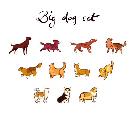 Vector set of dog in cartoon style, isolated on white background.