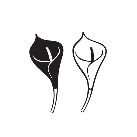 Vector Calla lily flower isolated on white background. Icons.