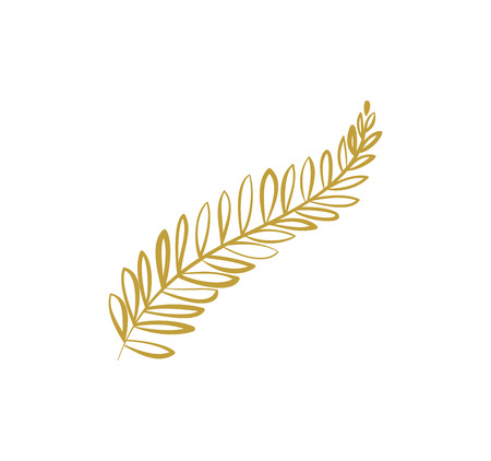 Doodle hand drawn palm branch with leaves isolated on white