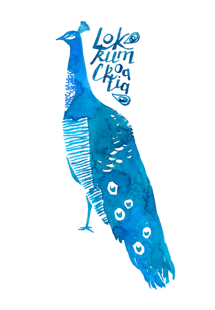 Peacock bird with lettering Locrum Croatia. Watercolor illustration isolated on white 写真素材