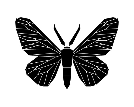 Peppered moth, Biston betularia melanic form. Moths in the family Geometridae vector illustration isolated on white background.
