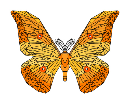 Japanese silk moth stylized vector illustration isolated on white Çizim