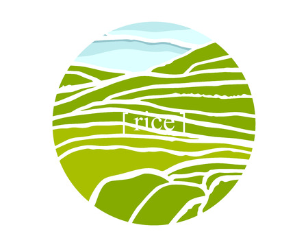 Rice fields. Plantation on cascades field. Rice title