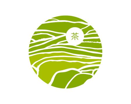 Tea plant fields. Vector tea plantation on cascades field. Tea title on Chinese
