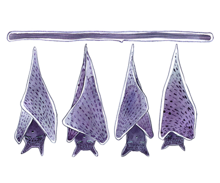 Watercolor cartoon hanging upside down bats isolated on white background - Illustration