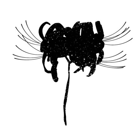 Hand drawn spider lily silhouette isolated on whit