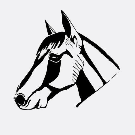 Logo, symbol, sign, stencil horse head.Unique technique. Vintage hand drawn style