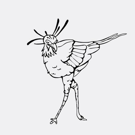 Hand-drawn pencil graphics, secretary bird, eagle, hawk, osprey. Engraving, stencil style. Black and white logo, sign, emblem, symbol. Stamp, seal. Simple illustration. Sketch.