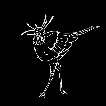 black secretary: Hand-drawn pencil graphics, secretary bird, eagle, hawk, osprey. Engraving, stencil style. Black and white logo, sign, emblem, symbol. Stamp, seal. Simple illustration. Sketch.