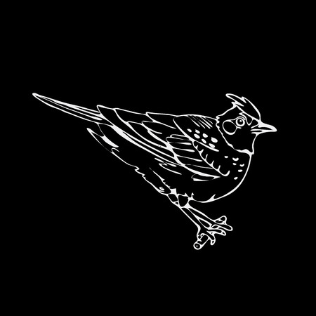 chickadee: Hand-drawn pencil graphics, lark, oriole, chickadee, sparrow, blackbird, nightingale, finch, bunting, hangbird. Engraving, stencil style. Black and white logo, sign, emblem, symbol. Stamp, seal. Simple illustration. Sketch. Illustration