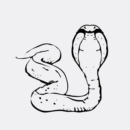 Hand-drawn pencil graphics, snake, cobra. Engraving, stencil style. Black and white logo, sign, emblem, symbol. Stamp, seal. Simple illustration. Sketch. Illustration